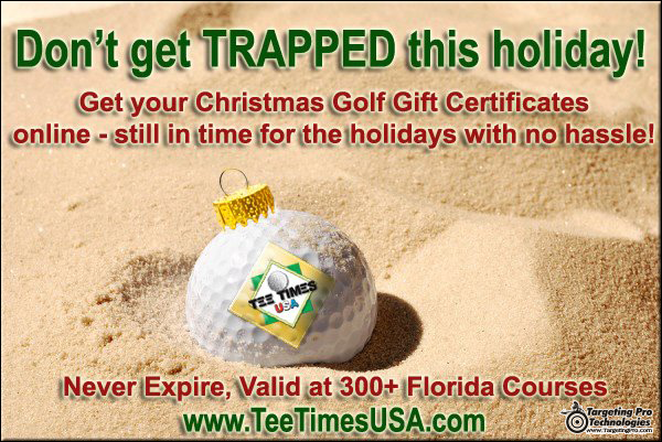 Graphic Design Holiday Event Travel Golf Christmas Advertising Services