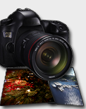Photography Marketing Gallery